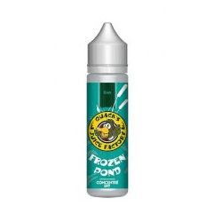 Concentré Frozen Pond 60ml - Quack's Juice